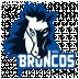 WSV Sterzing Broncos